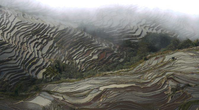 3 – de Yuanyang à Lijiang